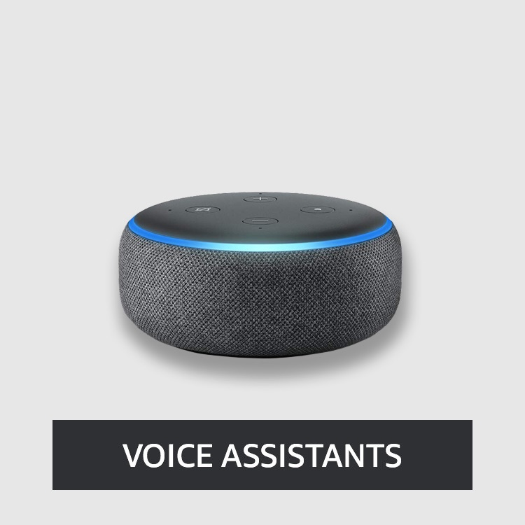 Smart Voice Assistants