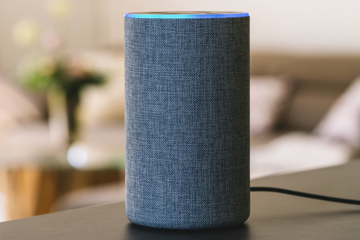 Work From Home Risk Alexa