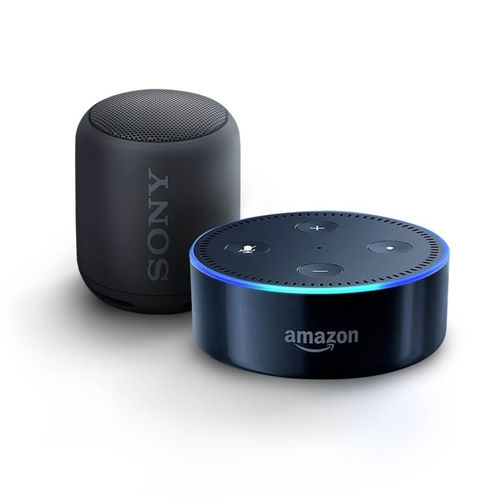 Echo Dot Sony